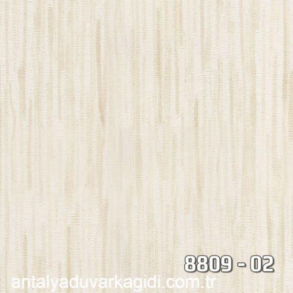 vinili-duvar-kağıdı-8809-02
