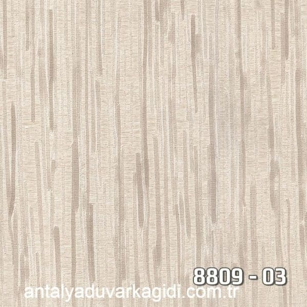 vinili-duvar-kağıdı-8809-03