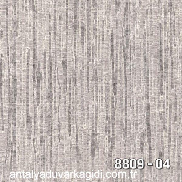 vinili-duvar-kağıdı-8809-04