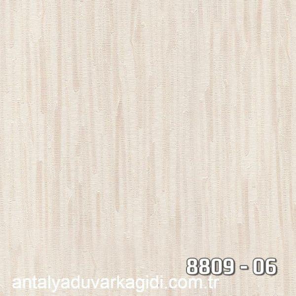 vinili-duvar-kağıdı-8809-06